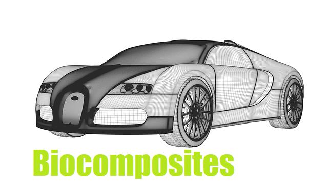 Biocomposites
