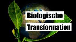 Die biologische Transformation