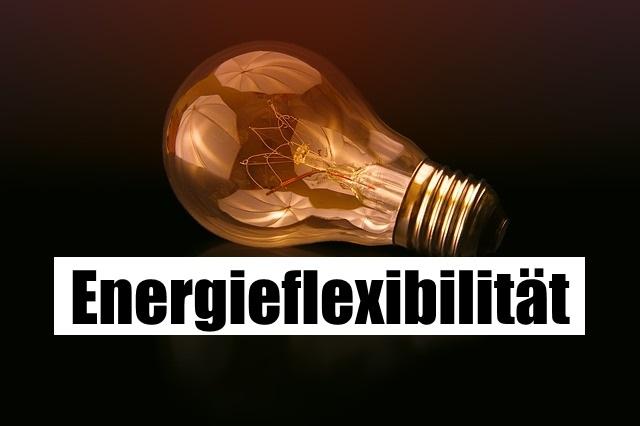 Energieflexibilität